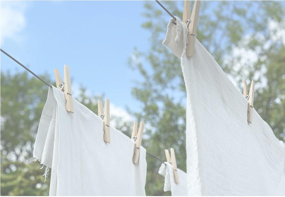 衣物清潔系列